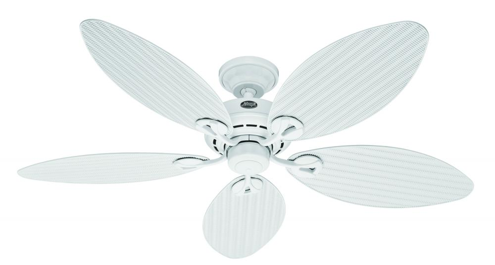 ceiling fan rated box  ceiling  free engine image for user